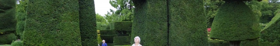 NO GHOSTS IN THE TOPIARY